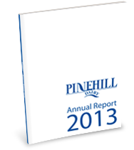 2013 Annual Report Thumbnail